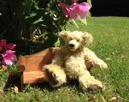 Mohair Teddy made from 20mm sparse mohair