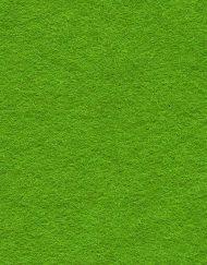 30% Wool Felt Moss